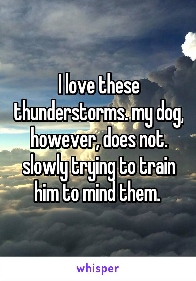 I love these thunderstorms. my dog, however, does not. slowly trying to train him to mind them.
