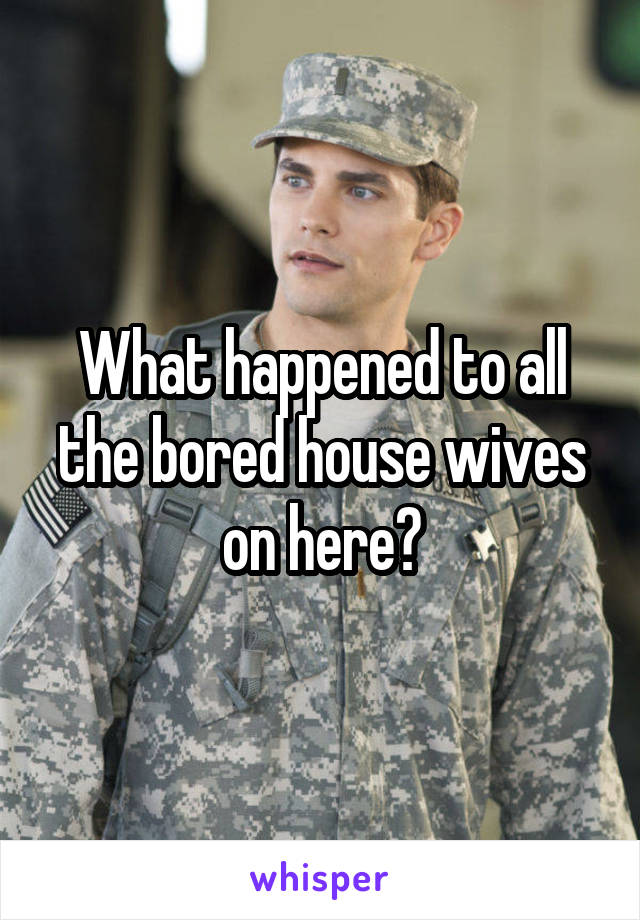 What happened to all the bored house wives on here?