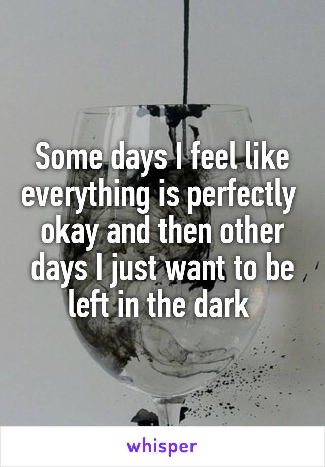 Some days I feel like everything is perfectly  okay and then other days I just want to be left in the dark
