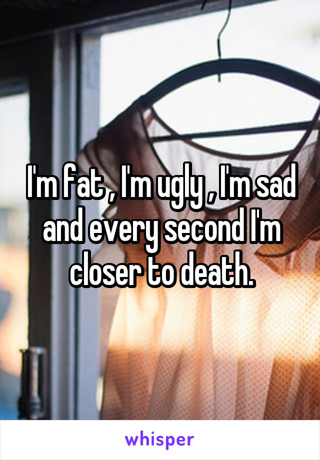 I'm fat , I'm ugly , I'm sad and every second I'm closer to death.