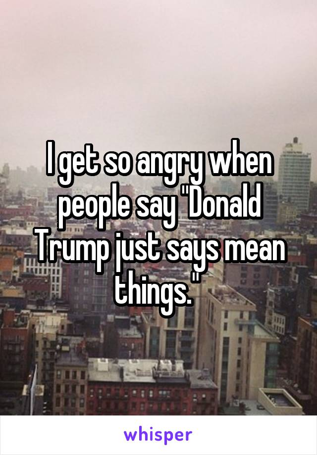 """I get so angry when people say """"Donald Trump just says mean things."""""""