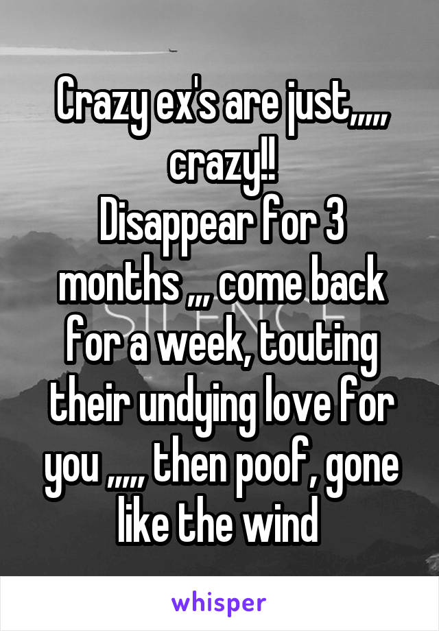 Crazy ex's are just,,,,, crazy!! Disappear for 3 months ,,, come back for a week, touting their undying love for you ,,,,, then poof, gone like the wind