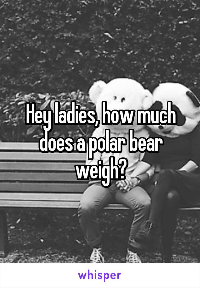 Hey ladies, how much does a polar bear weigh?