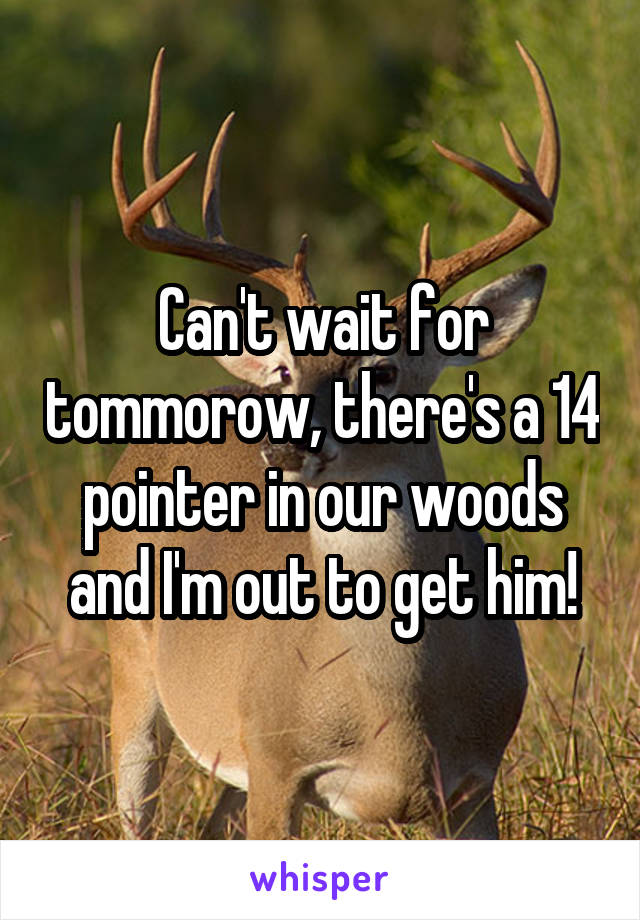 Can't wait for tommorow, there's a 14 pointer in our woods and I'm out to get him!