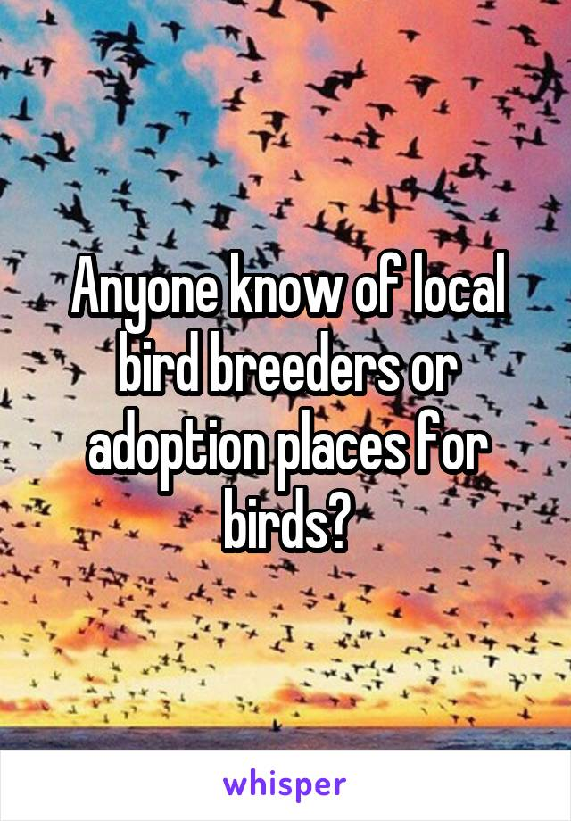 Anyone know of local bird breeders or adoption places for birds?