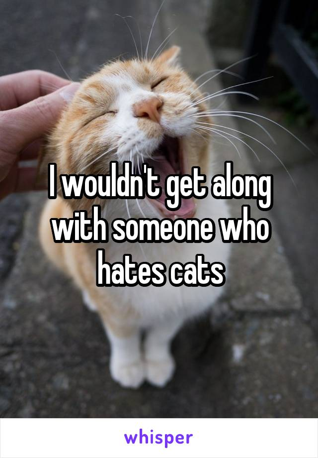 I wouldn't get along with someone who hates cats