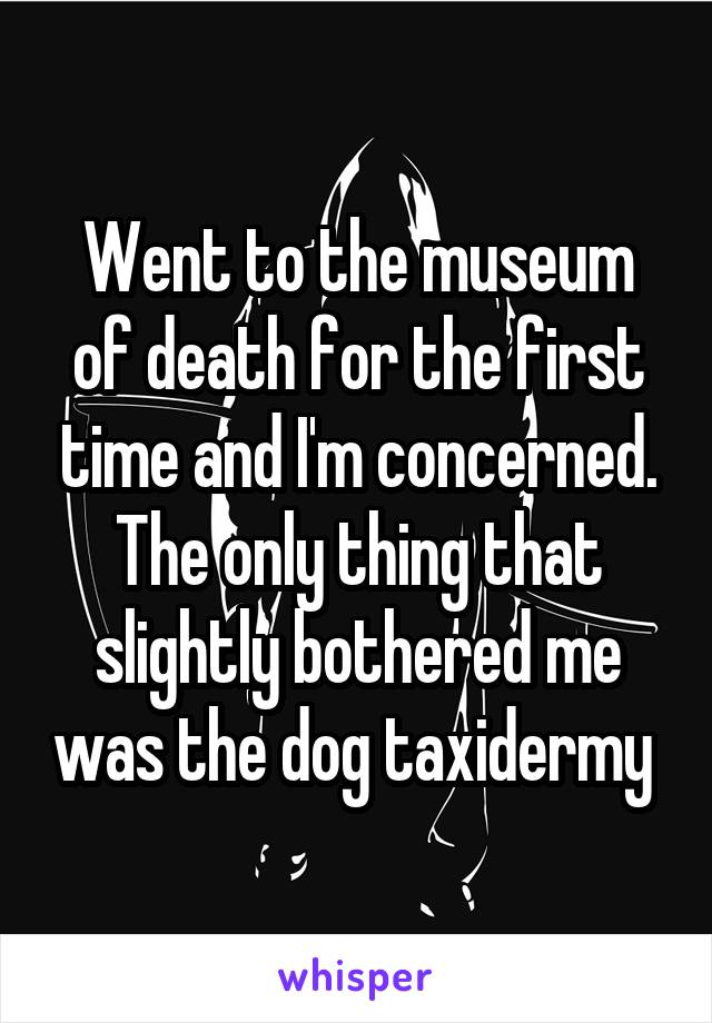 Went to the museum of death for the first time and I'm concerned. The only thing that slightly bothered me was the dog taxidermy