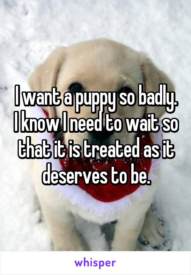 I want a puppy so badly. I know I need to wait so that it is treated as it deserves to be.