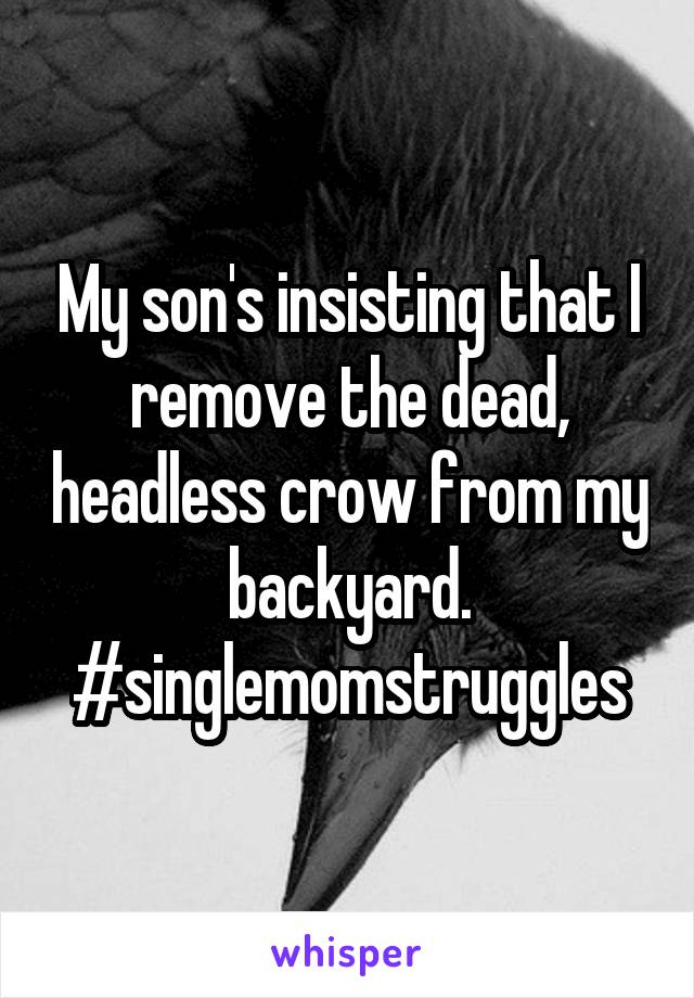 My son's insisting that I remove the dead, headless crow from my backyard. #singlemomstruggles