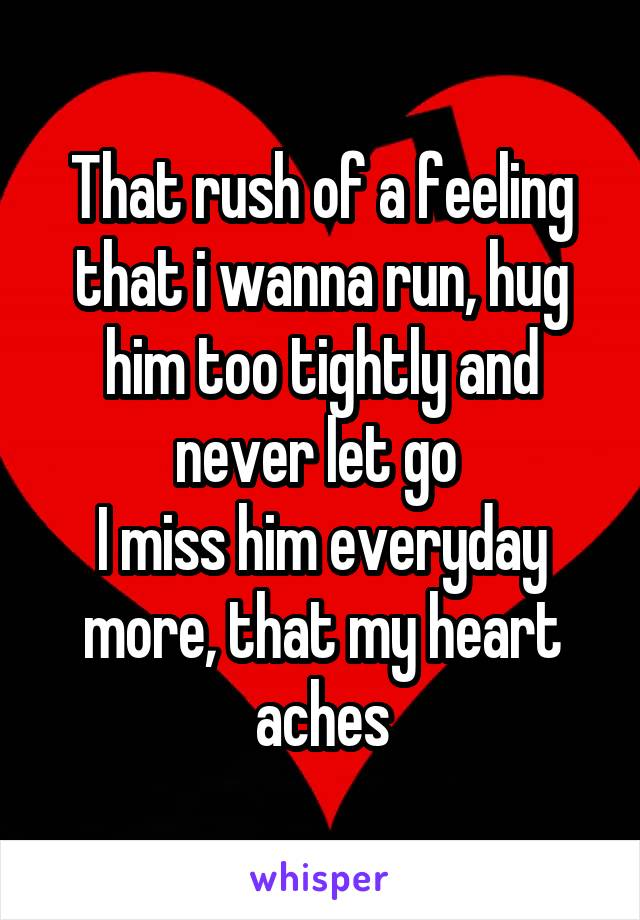 That rush of a feeling that i wanna run, hug him too tightly and never let go  I miss him everyday more, that my heart aches