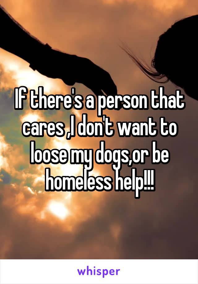 If there's a person that cares ,I don't want to loose my dogs,or be homeless help!!!